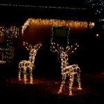 Vánoční osvětlení na X způsobů
